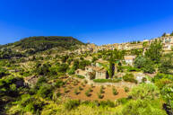 Buildings and trees against clear blue sky during sunny day at Valldemossa, Mallorca, Spain, Europe - THAF02593