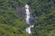 Scenic view of waterfall on mountain amidst trees, Grande Terre, New Caledonia - RUNF02946