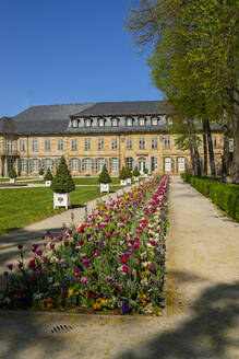 Plants growing in front of New Castle Bayreuth against clear blue sky, Franconia, Germany - LB02701