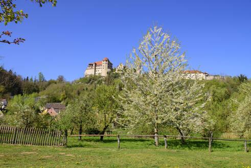 Burg Harburg der Fürsten Oettingen-Wallerstein, Harburg an der Wörnitz, Schwaben, Bayern, Deutschland - LBF02708