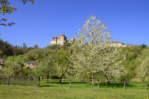 Low angle view of Harburg Castle on mountain against clear blue sky during sunny day, Germany - LBF02708