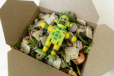 Lunch box with mixed salad and miniature robot - KNSF06488