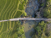 Aerial view of farmer riding motorcycle on road amidst agricultural land in Bali, Indonesia - KNTF03375