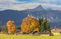 Wooden huts surrounded by colorful trees in autumn, Garmisch Partenkirchen, Upper Bavaria, Germany, Europe - RHPLF08830