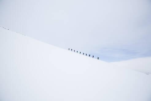 Cross country skiing - FOLF11051