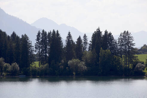 Scenic view of Forggensee lake against sky during sunny day at Ostallgäu, Germany - JTF01316