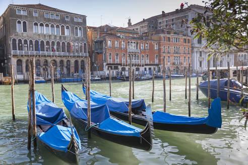Grand Canal and Gondola Station, Venice, UNESCO World Heritage Site, Veneto, Italy, Europe - RHPLF09092