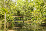 The pond inside Los Balsos botanical gardens in Jerico, Antioquia, Colombia, South America - RHPLF09297