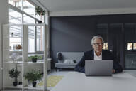 Senior businessman using laptop in office - GUSF02542