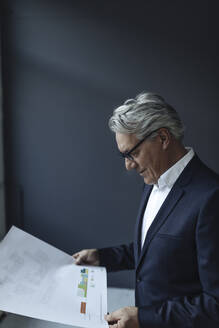 Senior businessman looking at papers - GUSF02608