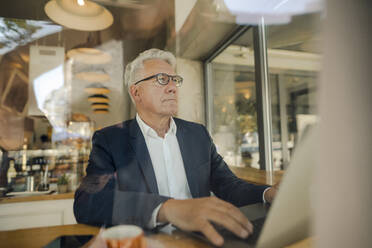 Senior businessman using laptop in a cafe - GUSF02634