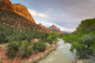 View down the Virgin River to the Watchman, Zion National Park, Utah, United States of America, North America - RHPLF10160