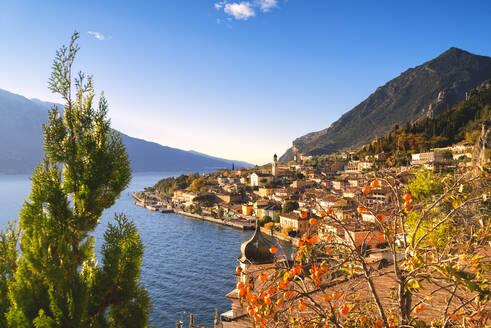 Limone sul Garda, Lake Garda, Brescia province, Lombardy district, Italian Lakes, Italy, Europe - RHPLF10504