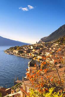 Limone sul Garda, Lake Garda, Brescia province, Lombardy district, Italian Lakes, Italy, Europe - RHPLF10510