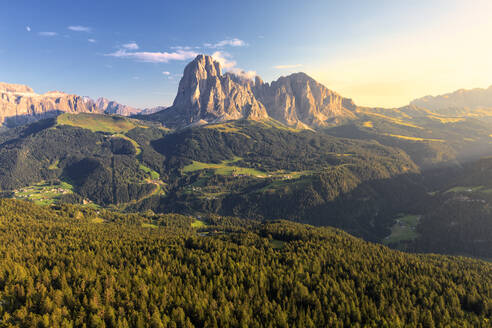 Elevated view of the forest above Gardena Valley with view on Sassolungo Group, South Tyrol, Dolomites, Italy, Europe - RHPLF10894