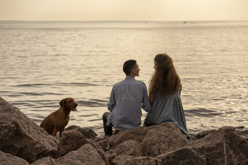 Young couple with dog at the beach in the evening - VPIF01503