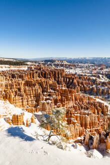 Bryce Canyon National Park, Utah, United States of America, North America - RHPLF11453