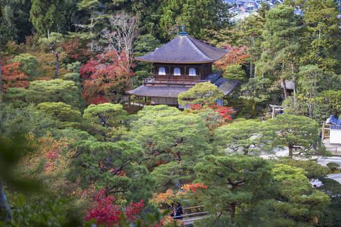 Ginkakuji Temple, UNESCO World Heritage Site, Kyoto, Japan, Asia - RHPLF11758
