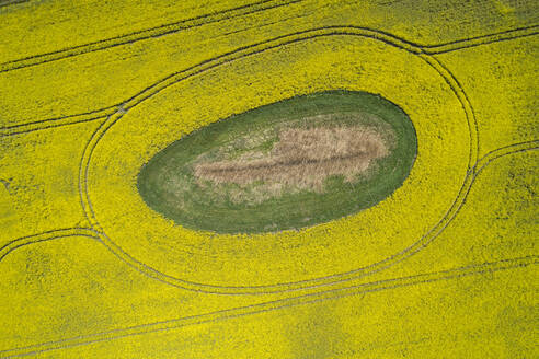 Germany, Mecklenburg-Western Pomerania, Aerial view of vast rapeseed field with green oval inside - RUEF02334