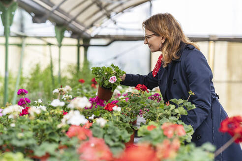 Woman buying flowers in plant nursery - DLTSF00166