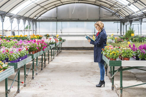 Female manager working in a plant nursery - DLTSF00172