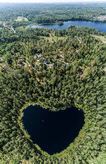 Heart-shaped lake surrounded by forest - JOHF01463