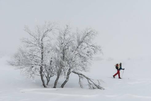 Person skiing - JOHF01496