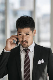 Portrait of young businessman talking on the phone - JPIF00202