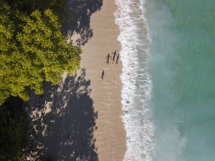 Aerial view of children at the beach, Sumbawa, Indonesia - KNTF03579