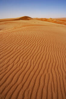 Sultanate Of Oman, Wahiba Sands, Rippled dunes in the desert - WWF05269