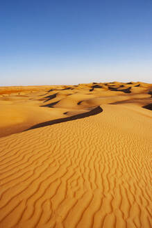 Sultanate Of Oman, Wahiba Sands, dunes in the desert - WWF05275