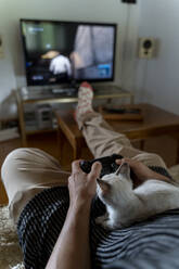 Man playing video game with kitten on his lap - AFVF04003