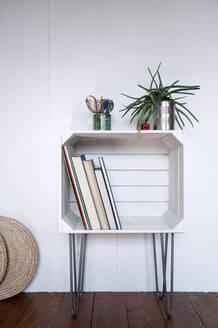 Upcycled fruitcrate used as bookshelf - GISF00471