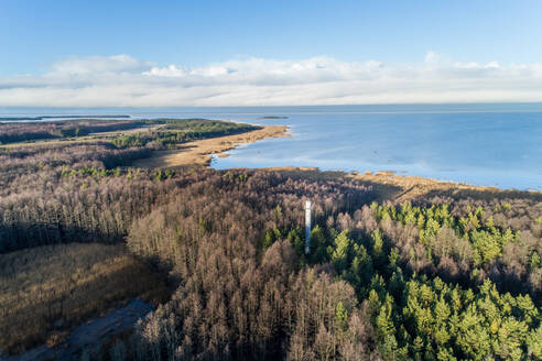 Aerial view of Norrby alumine tuletorn lighthouse in the forest on the coast of Vormsi Island, Estonia - AAEF04024
