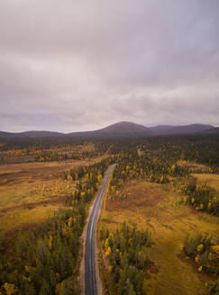 Aerial view of empty road crossing a colorful forest on a cloudy day in Finland - AAEF04063