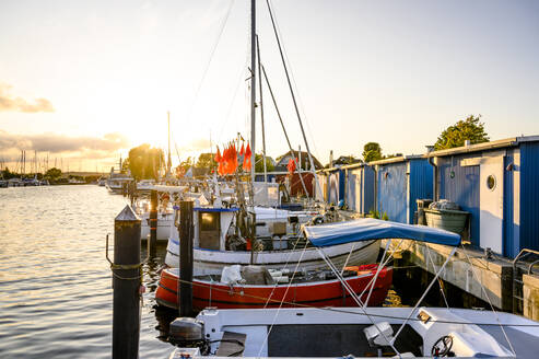 Germany, Schleswig-Holstein, Niendorf, Various boats moored in harbor at sunset - EGBF00321