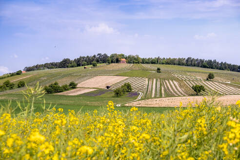 Germany, Bavaria, Baden-Wuerttemberg, scenic view of field - EGBF00341