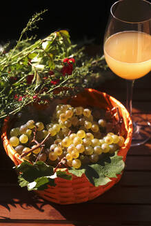 Close up of young grapes in bowl - JTF01376
