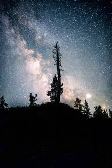 Nightfall starry sky milky way - CAVF64804