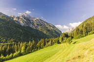 Austria, Carinthia, Scenic view of Gailtaler Polinik and forested valley in summer - AIF00683