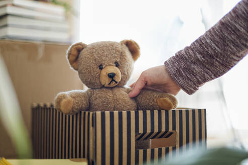 Close-up of woman unpacking cardboard box in new home taking out teddy bear - MAMF00834