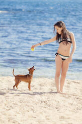 Girl playing with dog on the beach - XCF00287