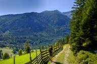 Wanderer am Panoramaweg, Bärenwaldrunde, Steinberg am Rofan, Tirol, Österreich - LBF02728