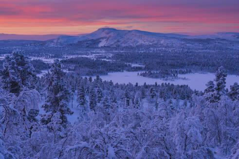 Winter landscape at sunset - JOHF03082