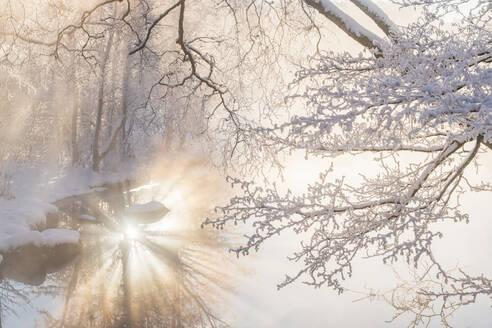River at winter - JOHF03157