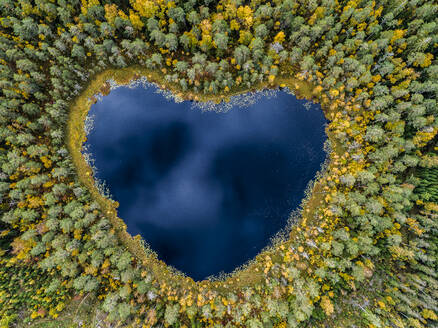 Heart-shaped lake surrounded by forest - JOHF04024