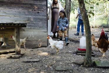 Family in a chicken pen on an organic farm - SODF00098