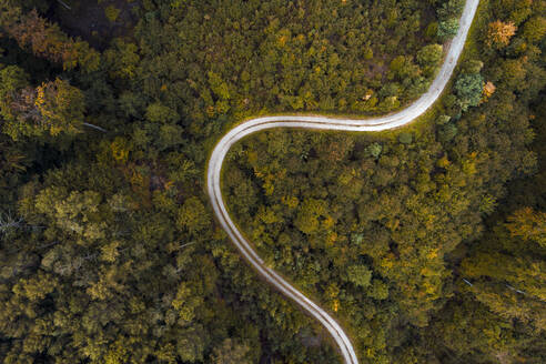 Austria,Lower Austria, Aerial view of winding gravel road through vast autumn forest - HMEF00631