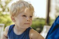 Portrait of a little blond boy in sunlight - MFF04913