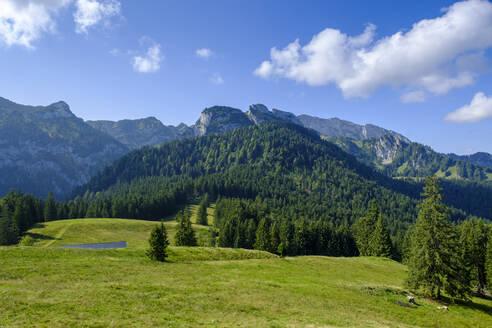 Benediktenwand vom Längenberg, bei Arzbach, Isarwinkel, Oberbayern, Bayern, Deutschland - LBF02738